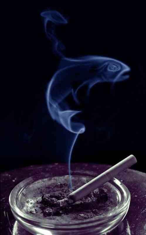 smoke12