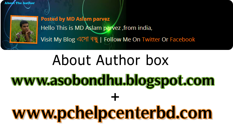 about author box
